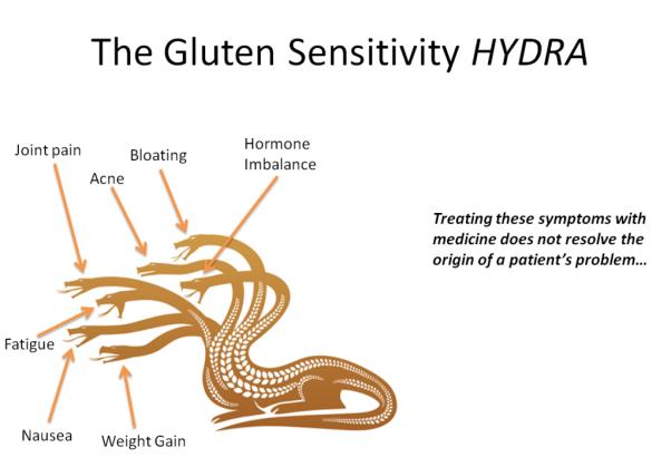 Gluten-Sensitivity-Hydra-Pic-1024x713.png